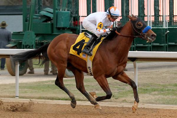 Phoenix Rises Quickly Into Derby Oaks Picture With