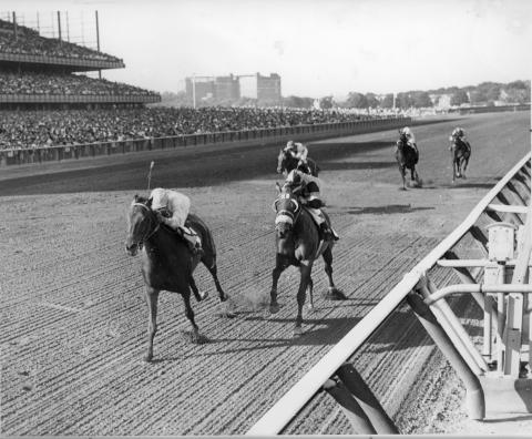 3 KELSO Horse Postcards Thoroughbred Gelding Race Horse of Year 5X 1960-1964