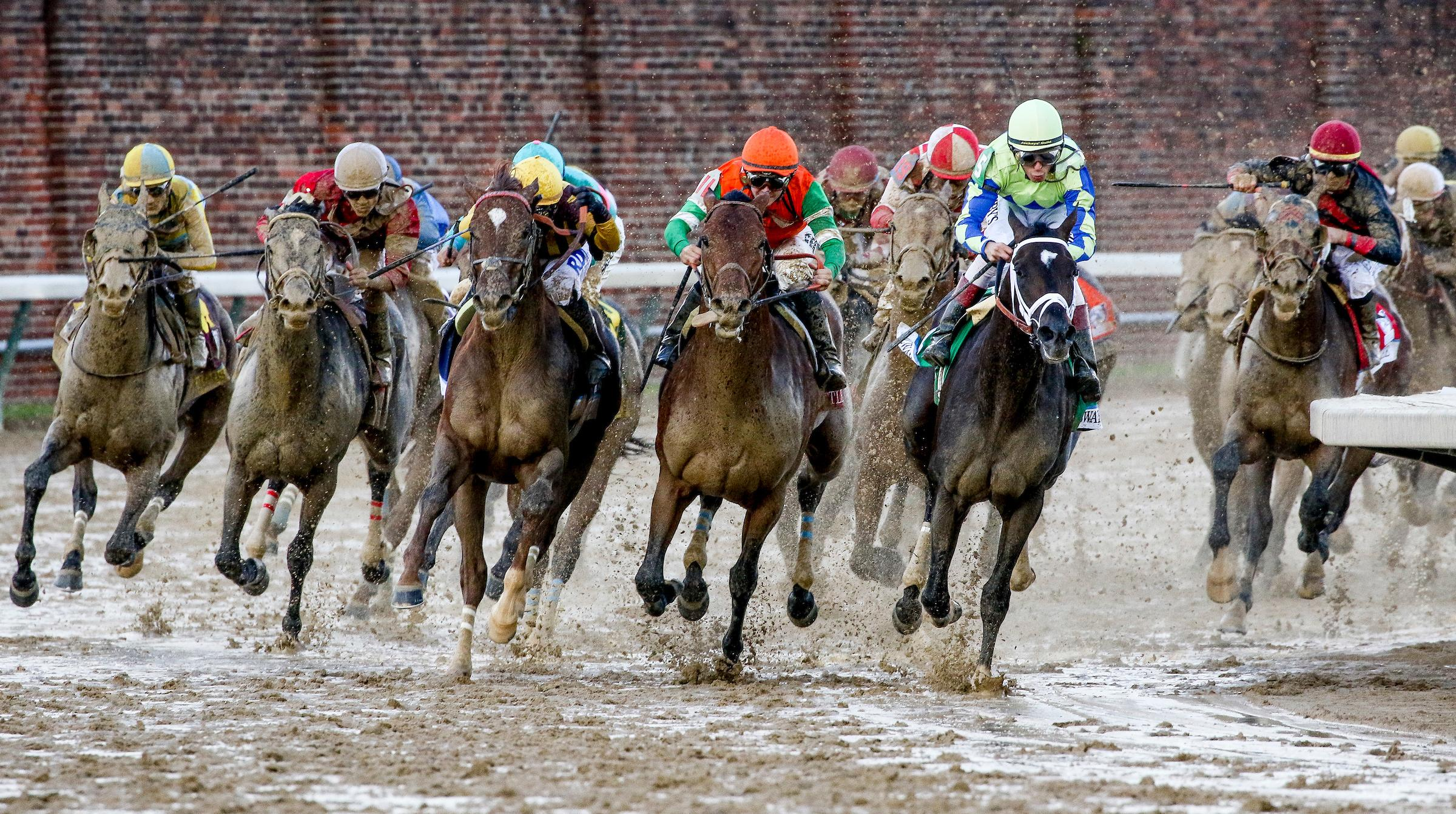 Horses turn for home in the 2017 Kentucky Derby.