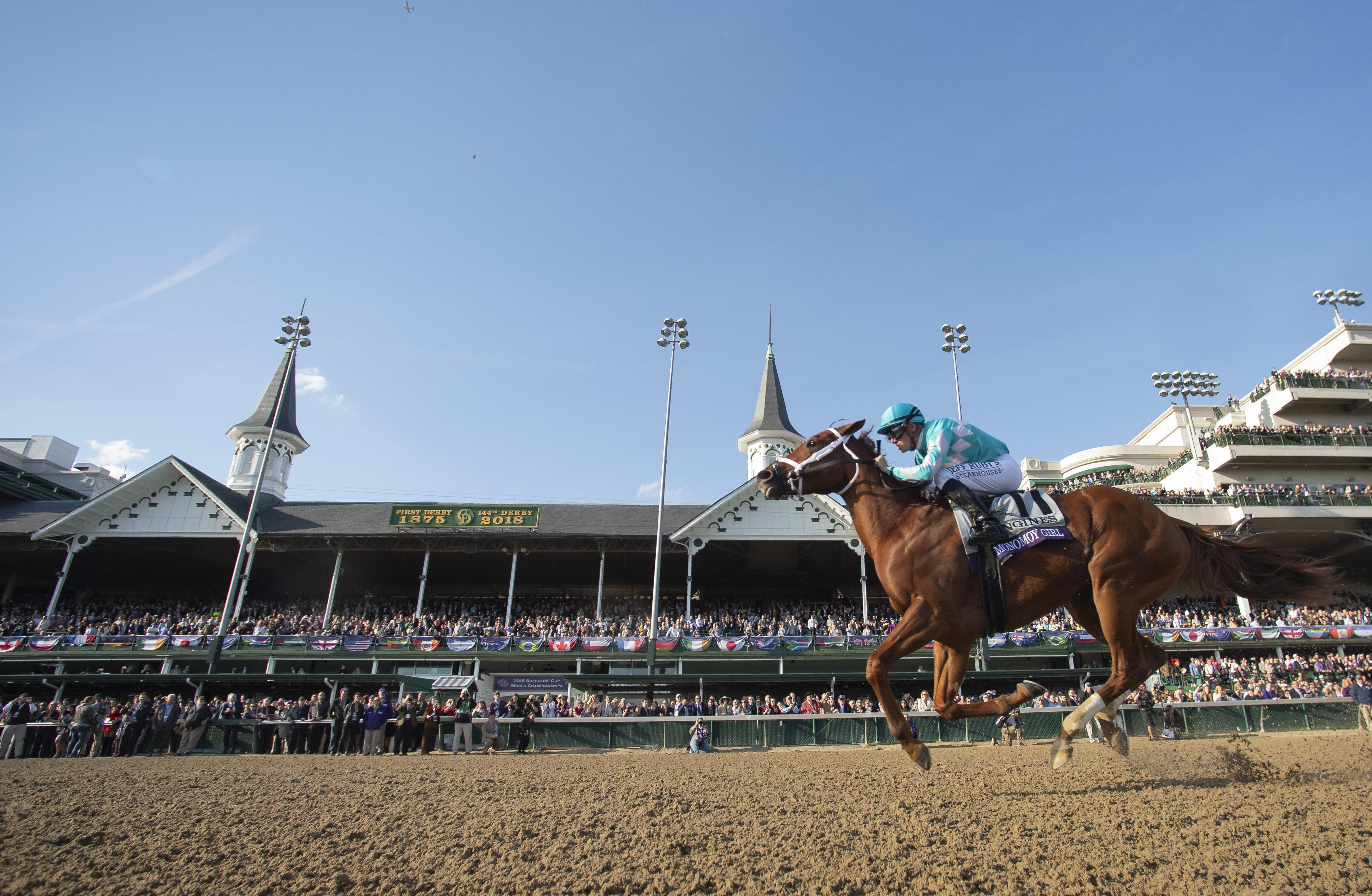 Monomoy Girl wins the Breeders' Cup Distaff