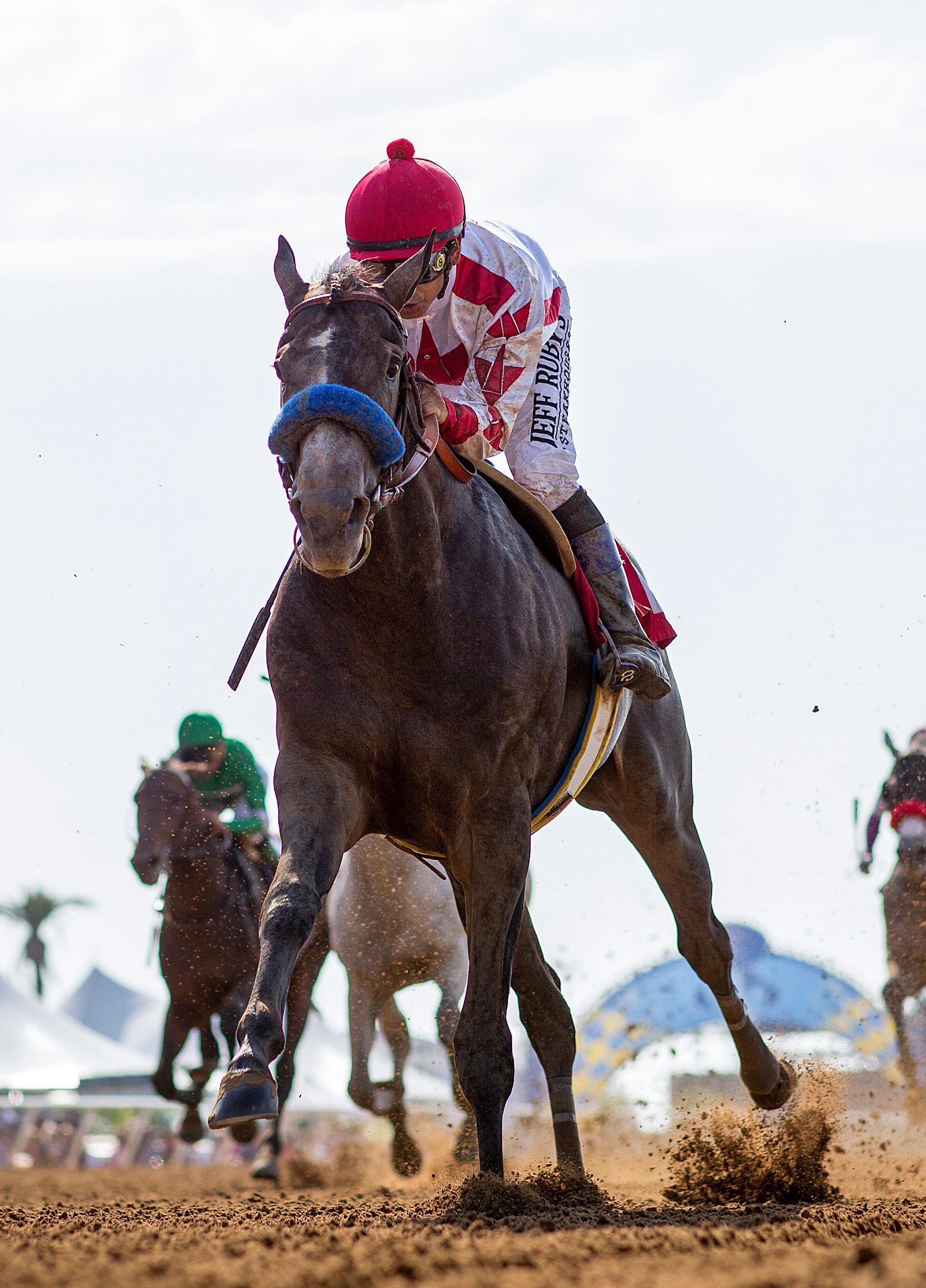 Betting Against Game Winner In The 2019 Santa Anita Derby