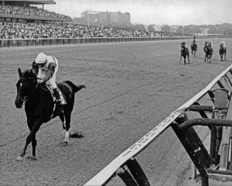Ruffian romps in the 1975 Mother Goose Stakes.