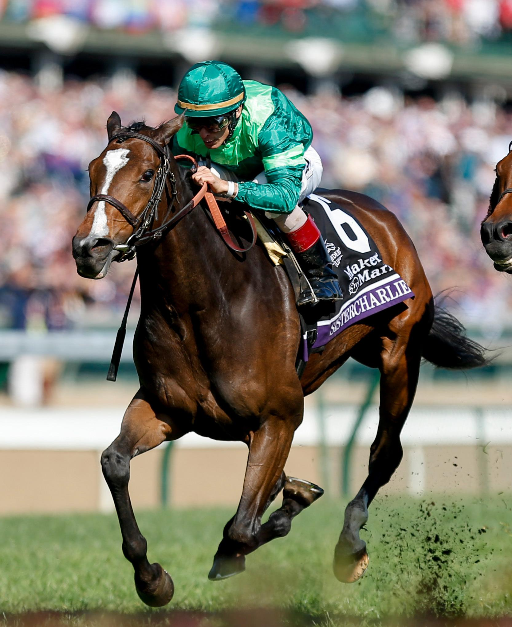 Getting To Know Breeders Cup Filly And Mare Turf