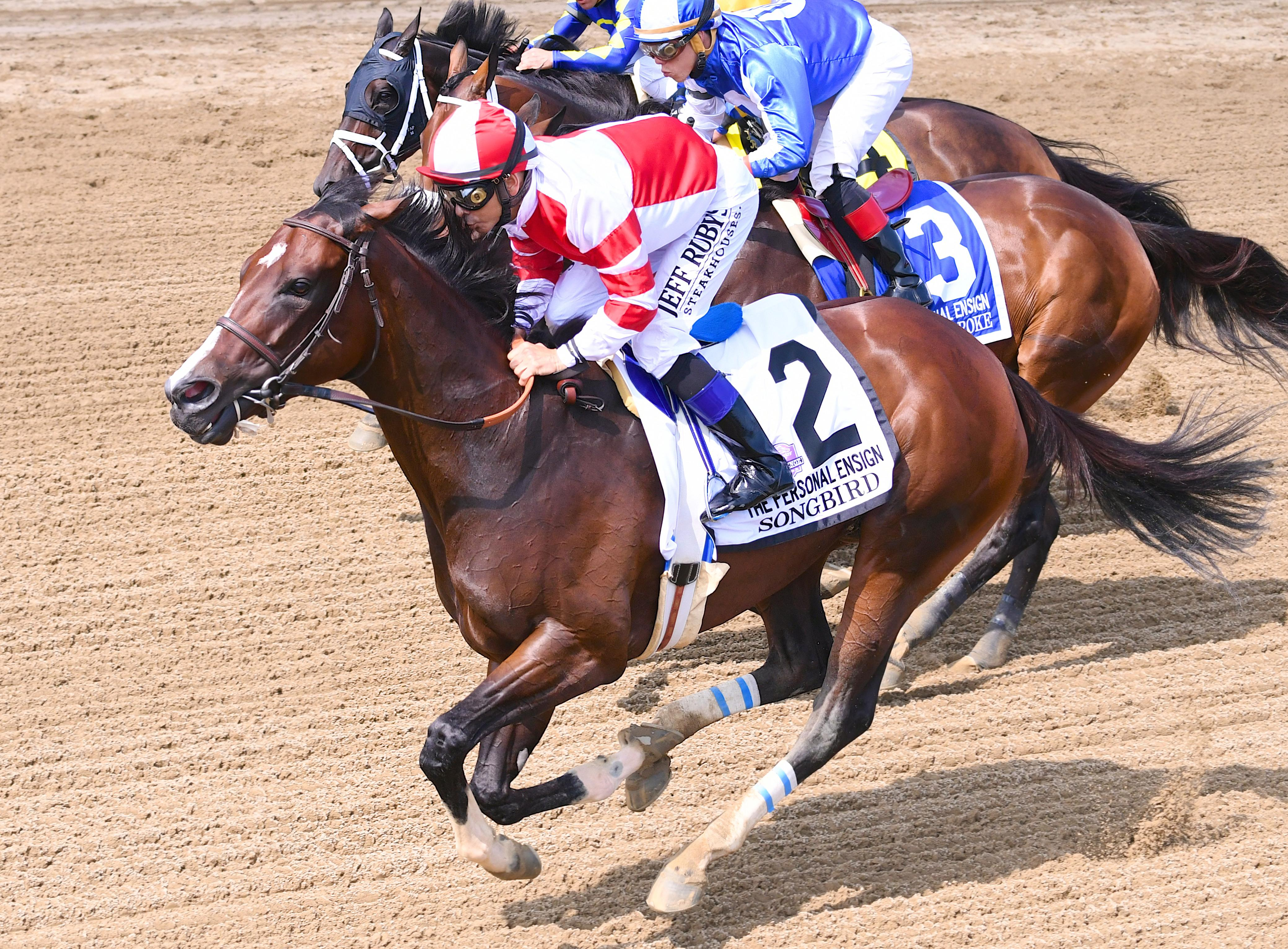 America S Best Thoroughbreds Presented By America S Best