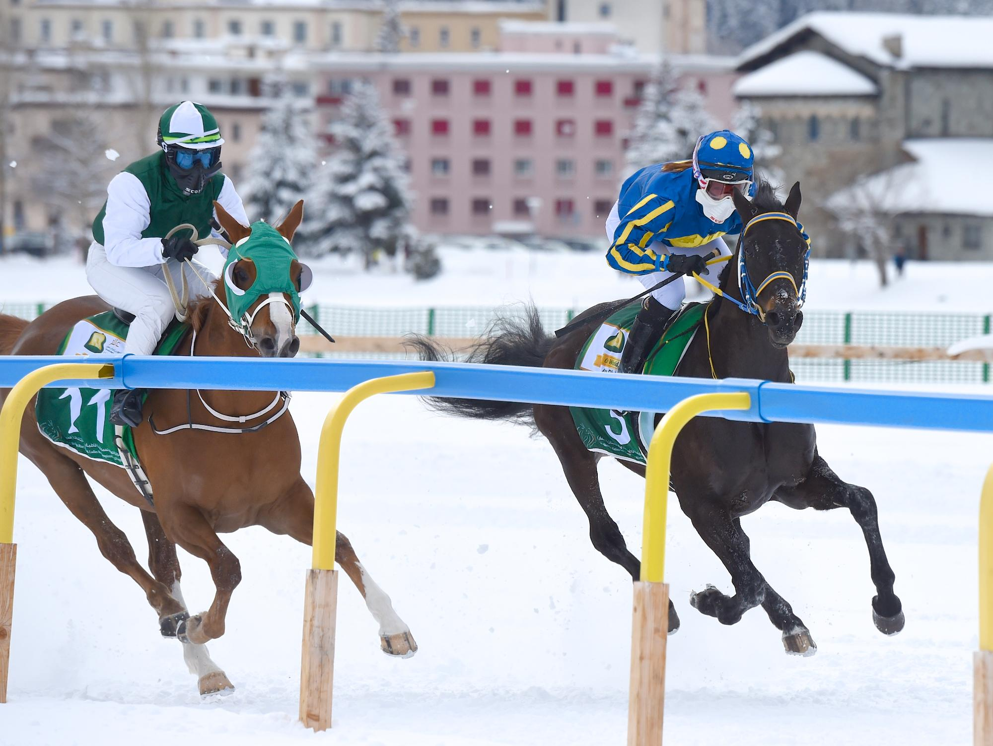 Horses race in the snow in Switzerland.