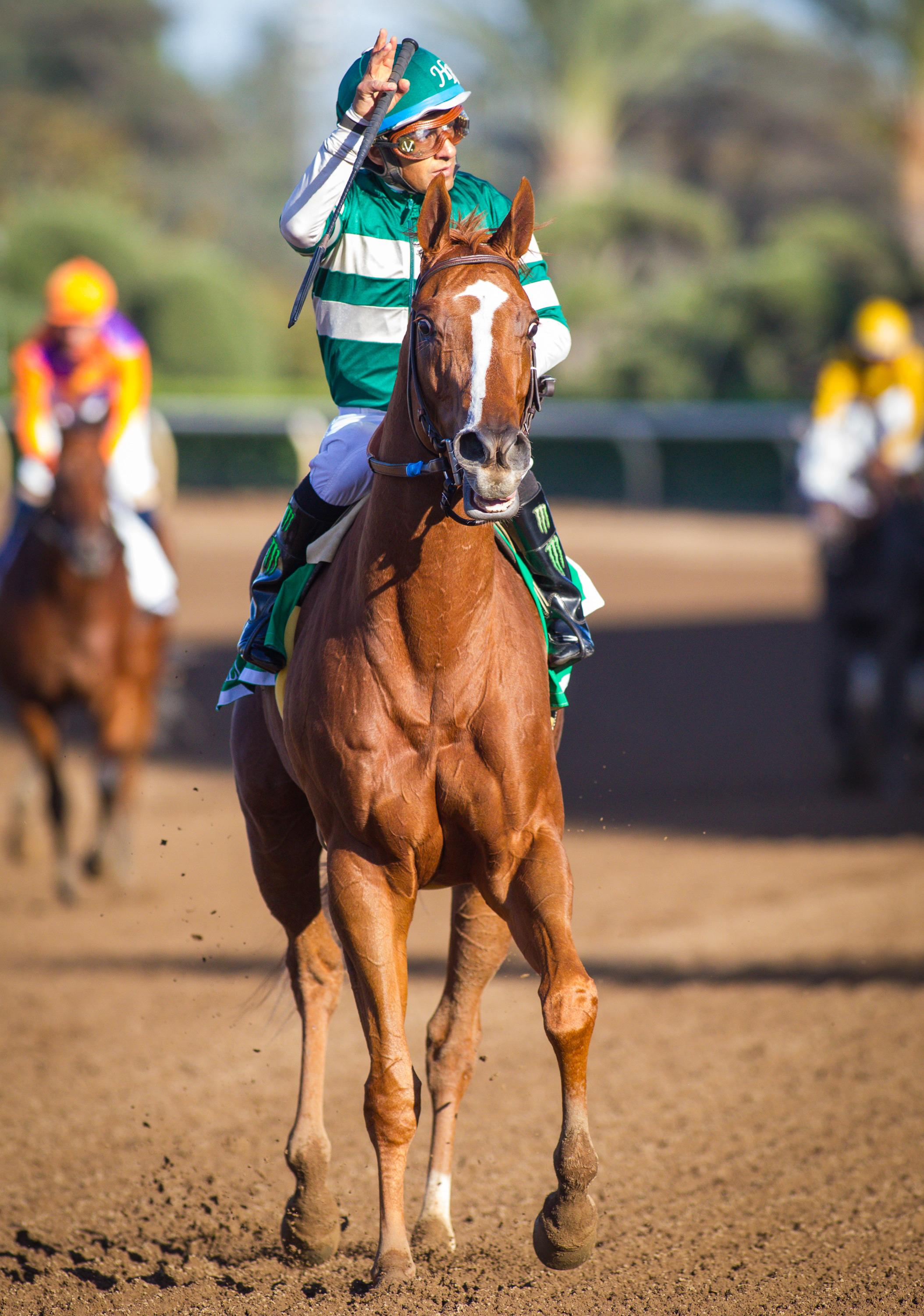 America S Best Thoroughbreds Presented By America S Best Khakis America S Best Racing