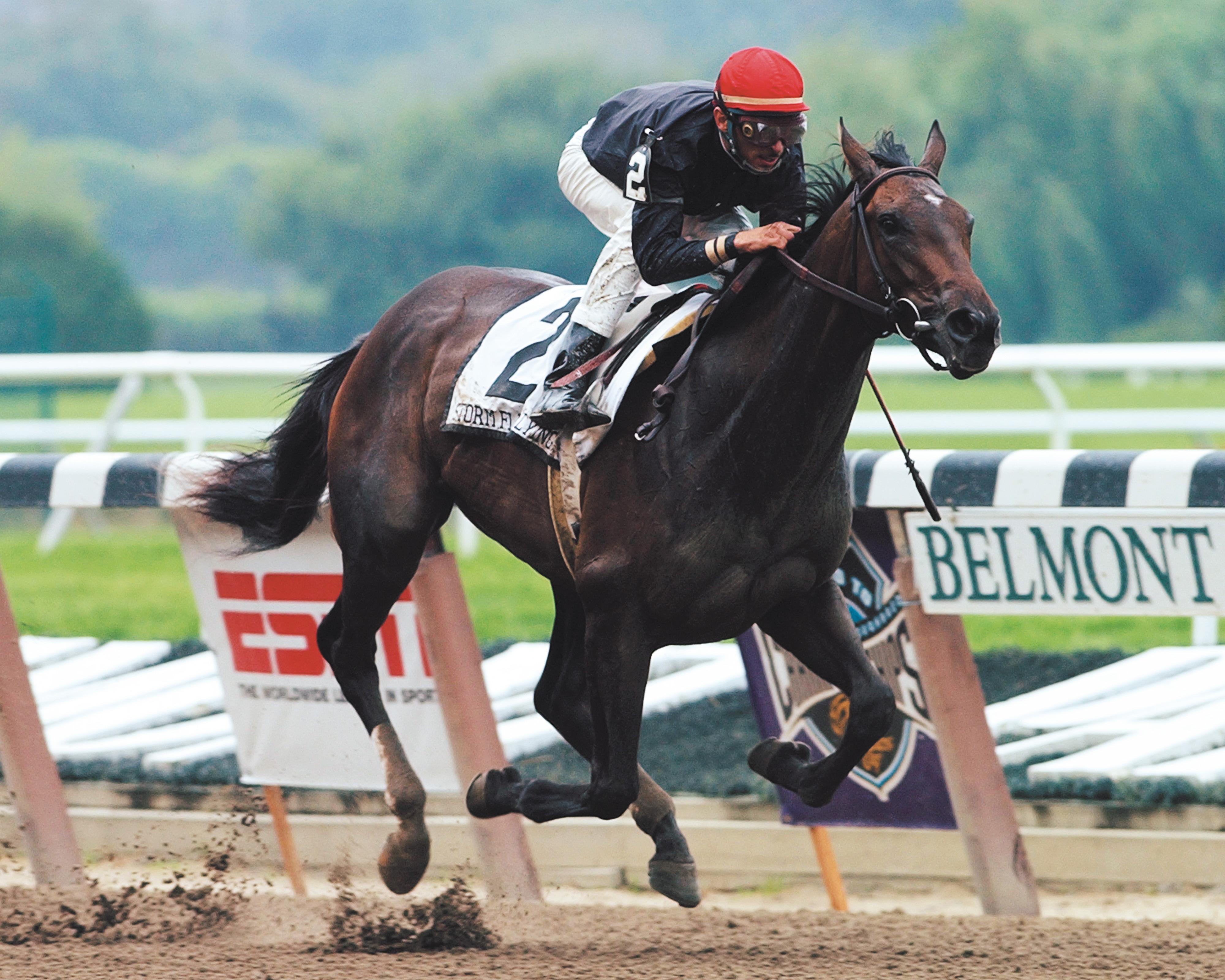 Storm Flag Flying wins the Matron Stakes as a 2-year-old.