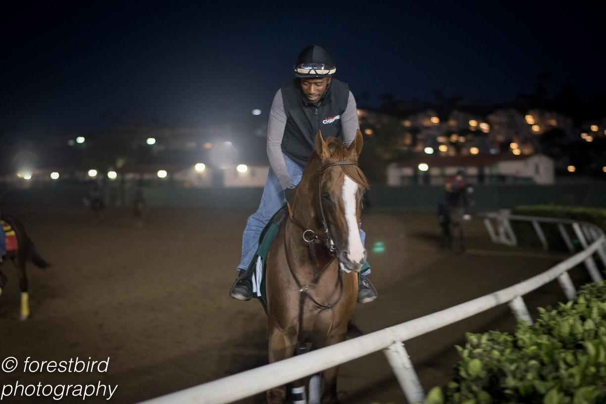 California Chrome wins $1 million Pacific Classic