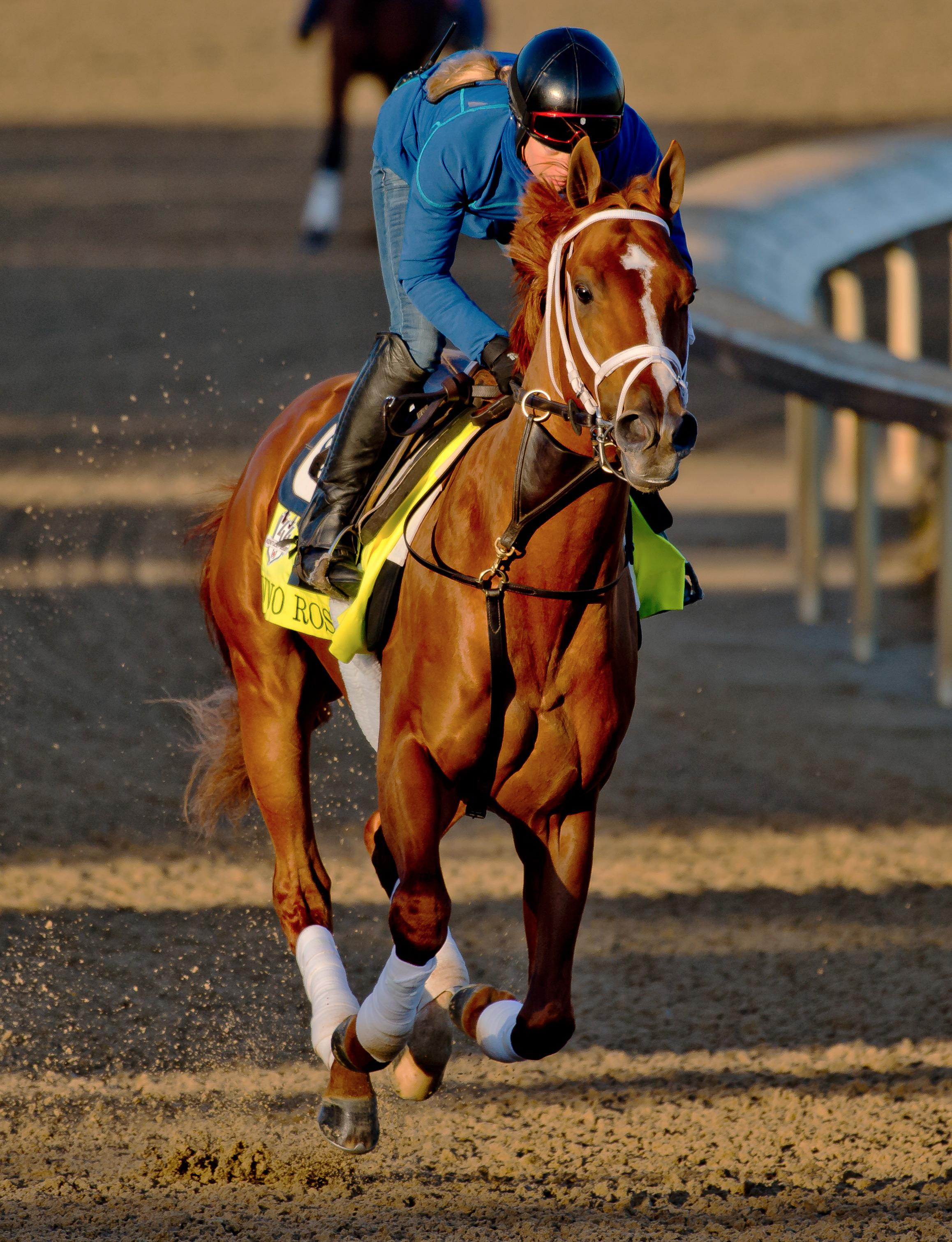 Breeders Cup Classic Rankings For July 2 America S Best