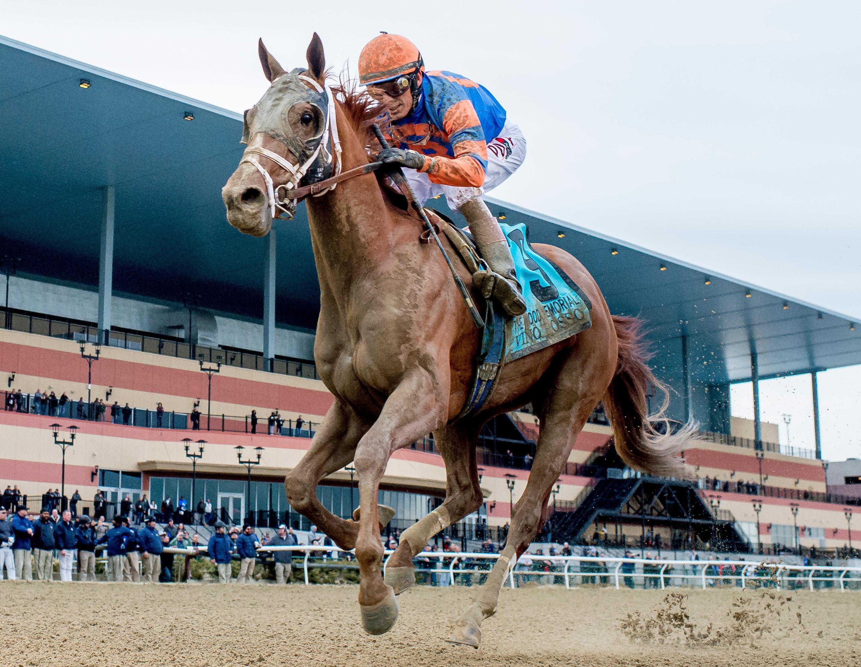 America S Best Horses Presented By America S Best Khakis