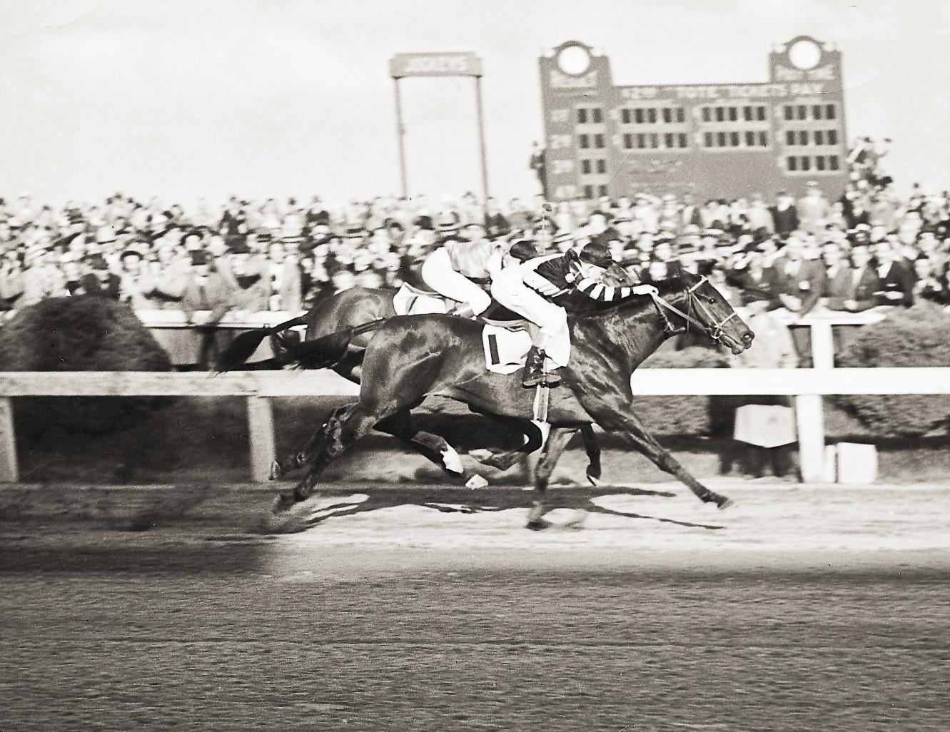 War Admiral wins the 1937 Preakness Stakes.