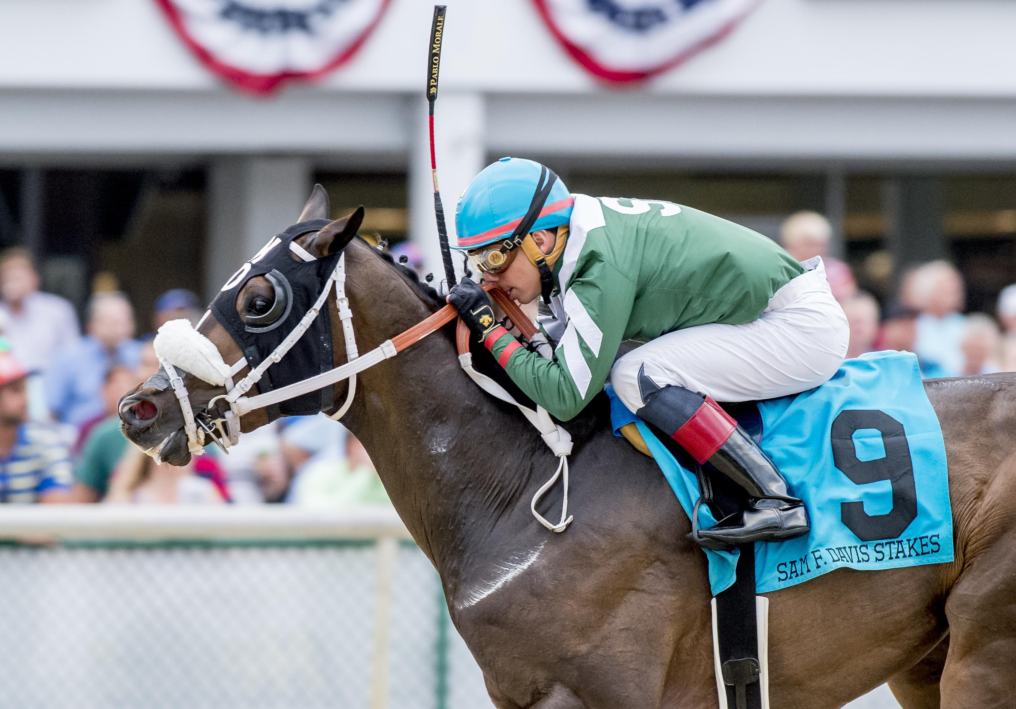 Well Defined wins the Sam F. Davis Stakes.