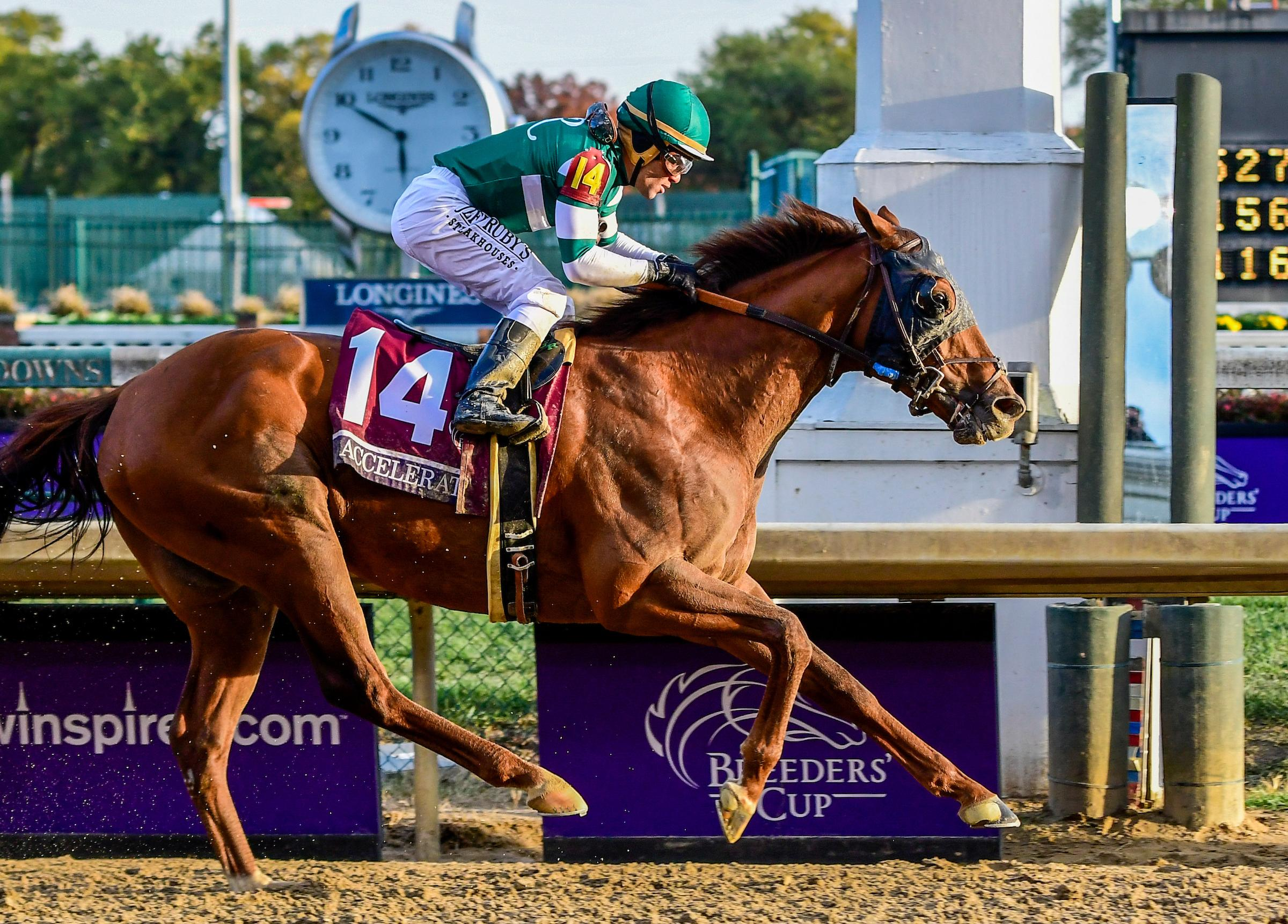 Justify Or Accelerate Breeders Cup Result Stirs Horse Of