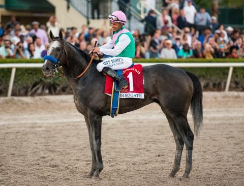 Famous Horses Who Never Won A Triple Crown Race America