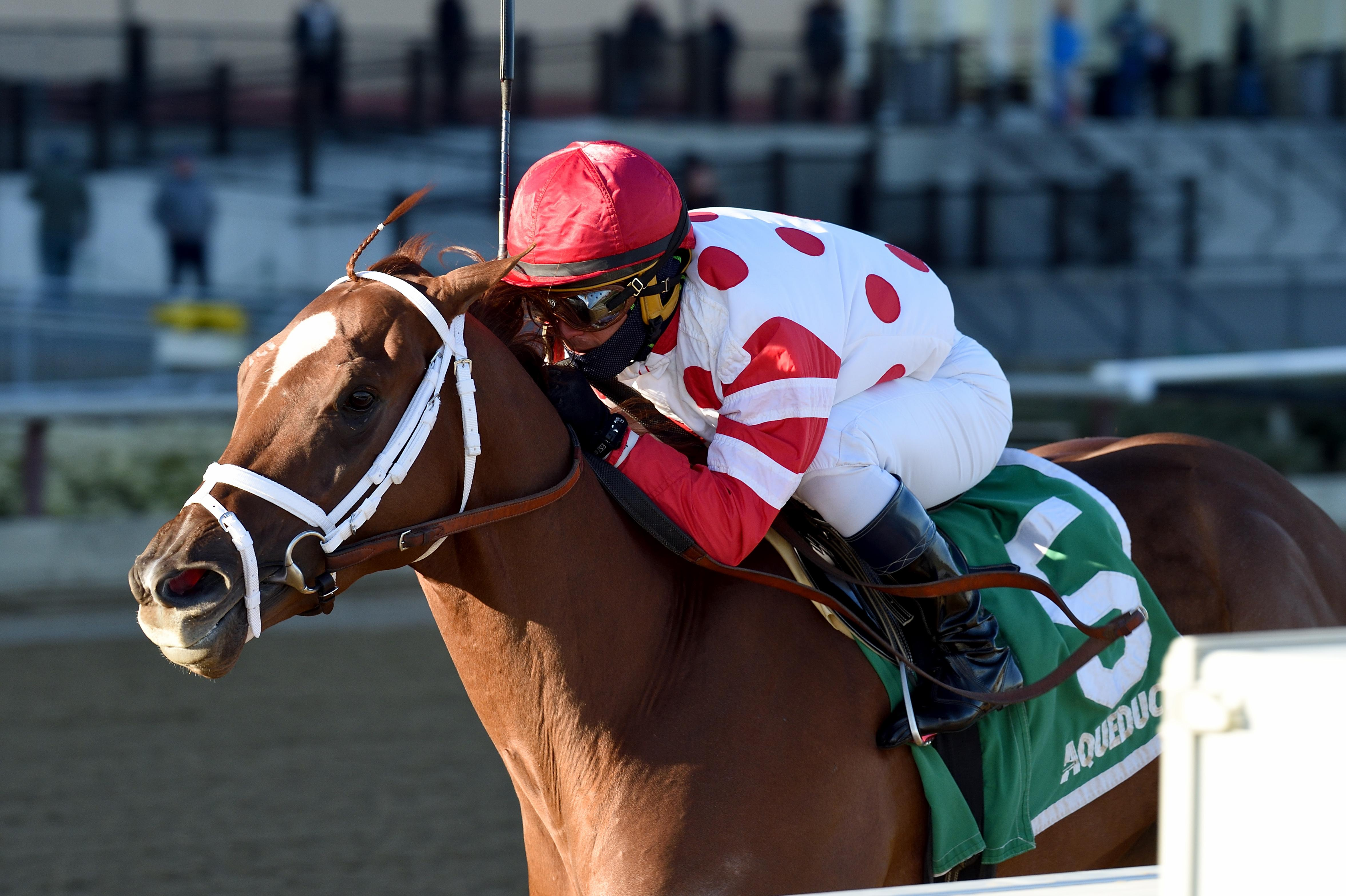2019 Woodward Stakes Cheat Sheet America S Best Racing
