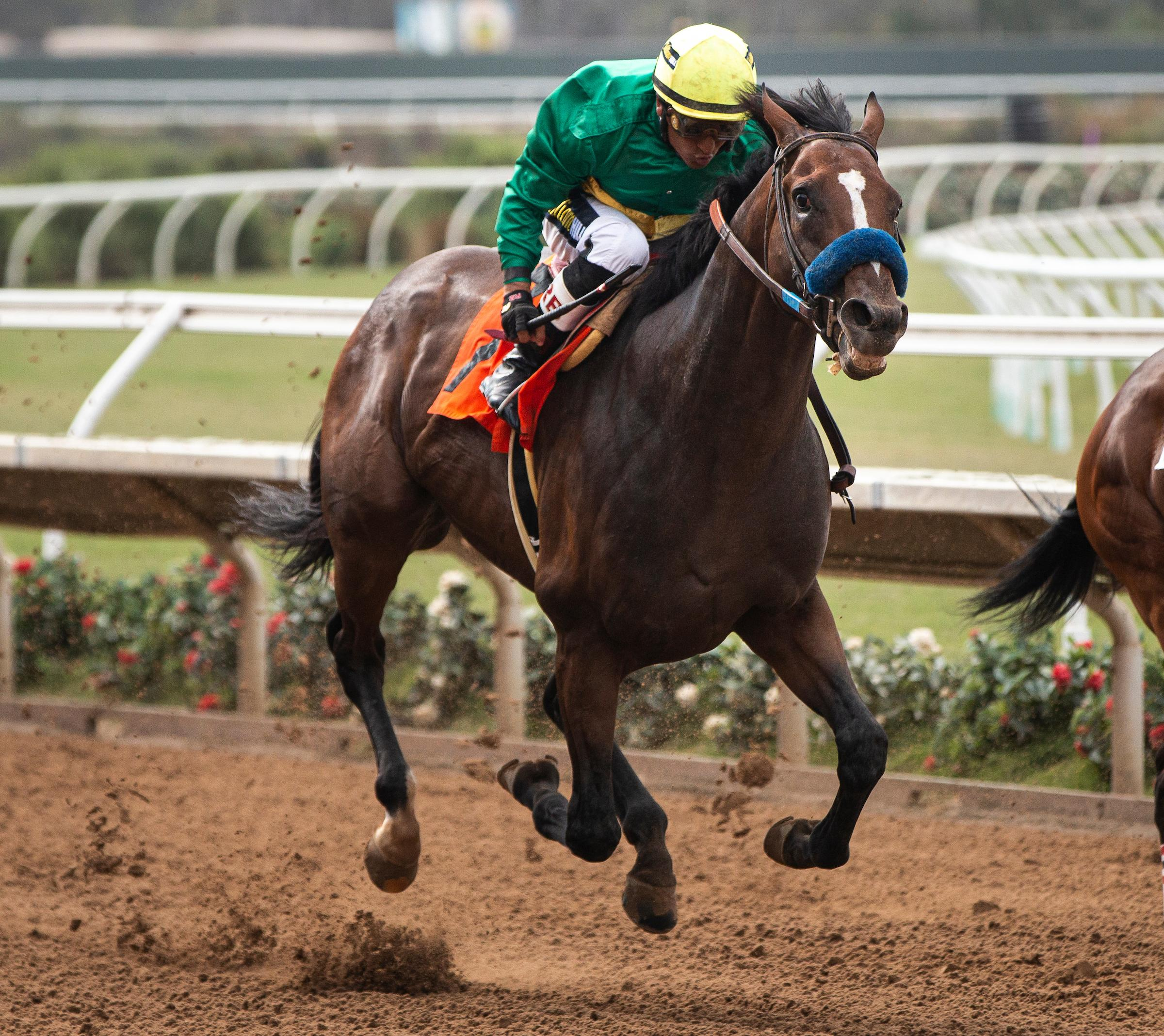2019 Tvg Pacific Classic Cheat Sheet America S Best Racing