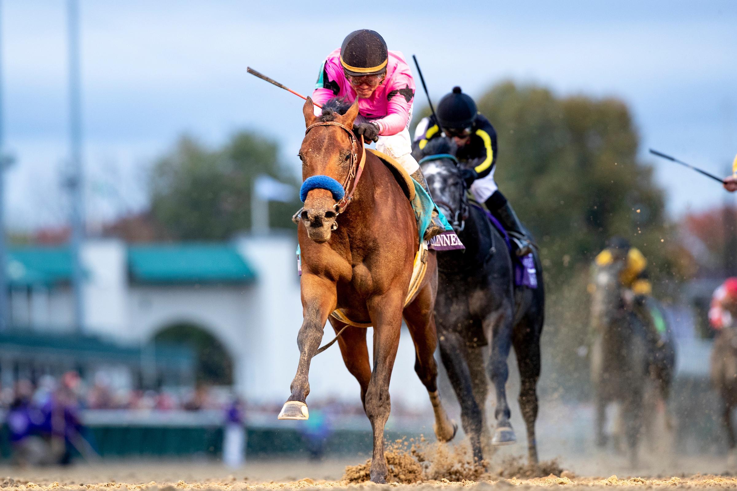 Sporting betting breeders lsu vs florida betting odds