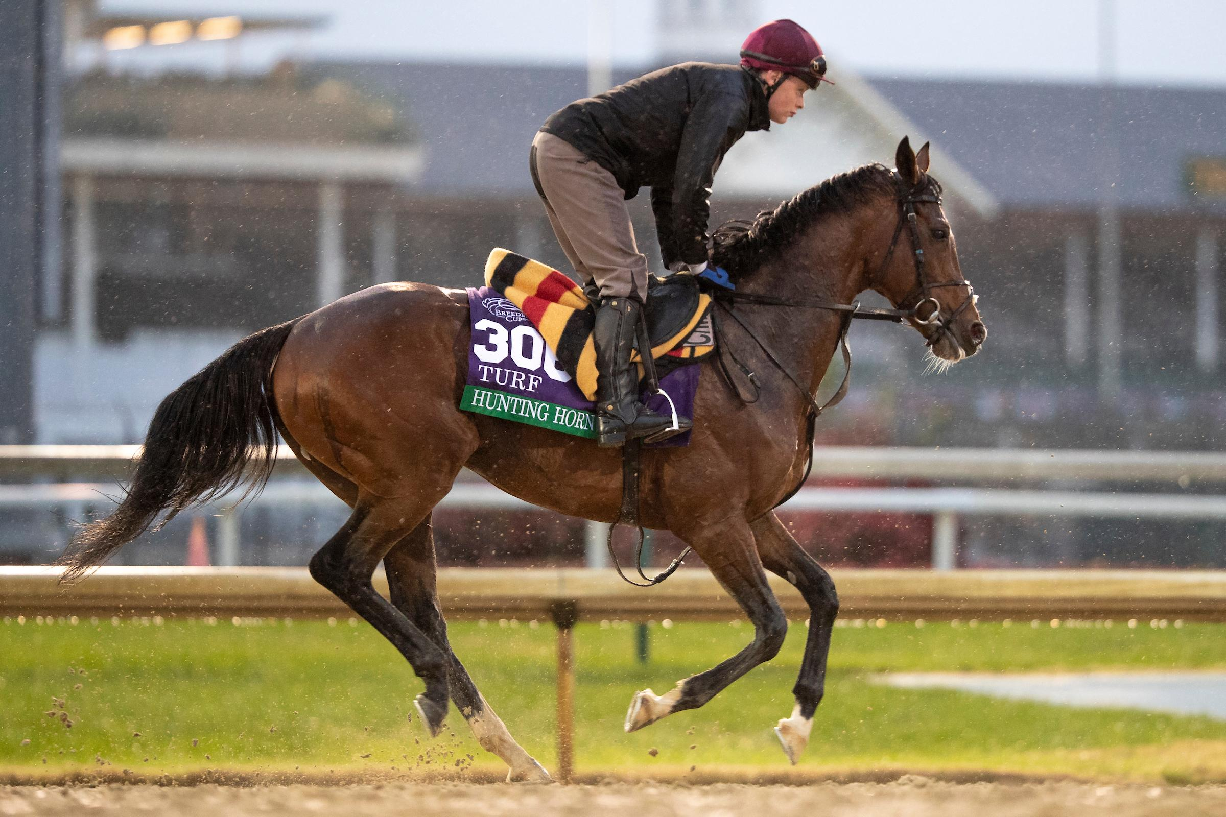 Horses To Know At The 2019 Royal Ascot Meet America S Best Racing
