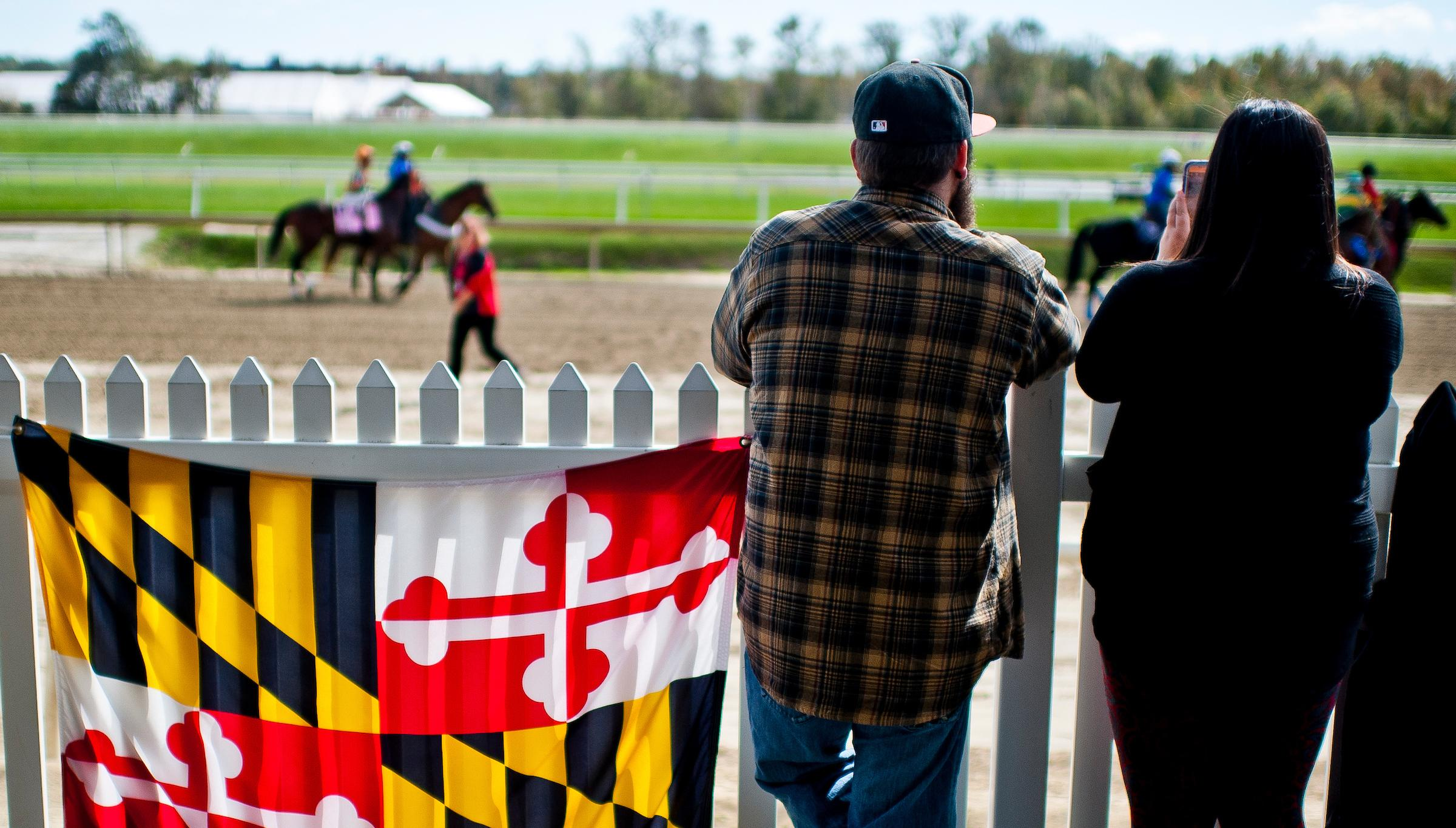 Four Reasons For Horse Racing Fans To Get Excited About