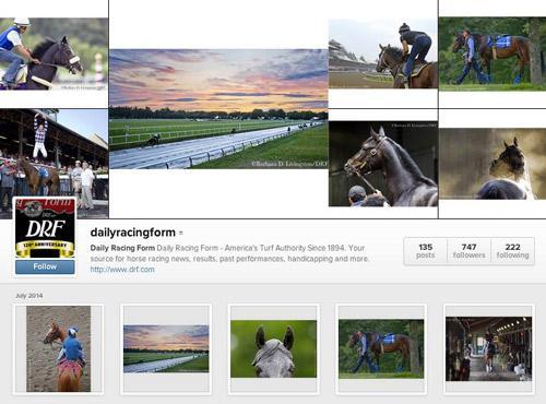 Ten Instagram Accounts To Follow For Saratoga Americas Best Racing