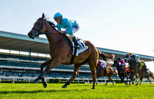 America S Best Thoroughbreds For Sept 8 America S Best Racing