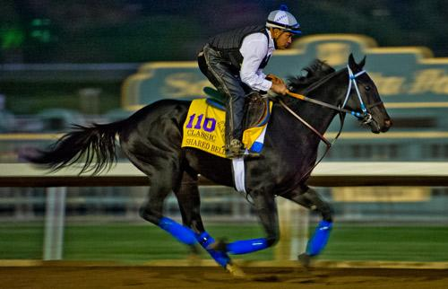 Americas Best Thoroughbreds For Nov 3 America S Best Racing