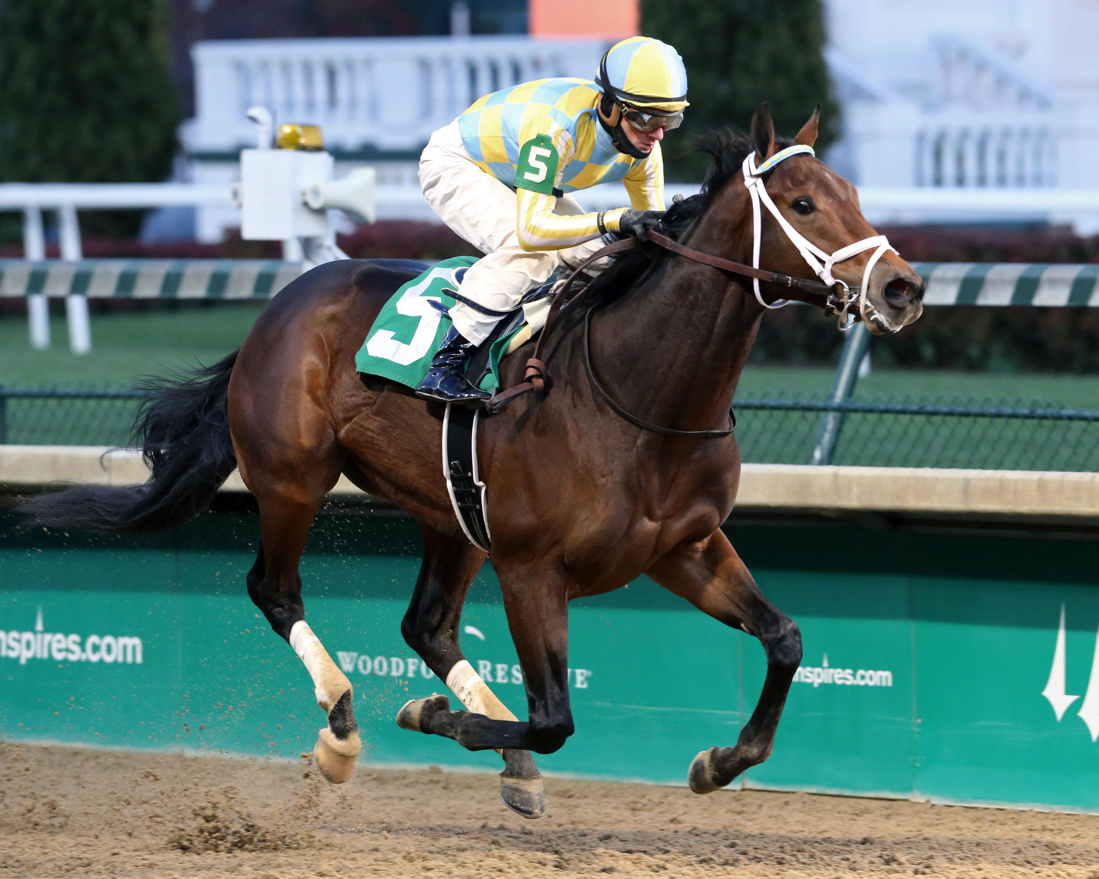 2018 Holy Bull Stakes Cheat Sheet America S Best Racing