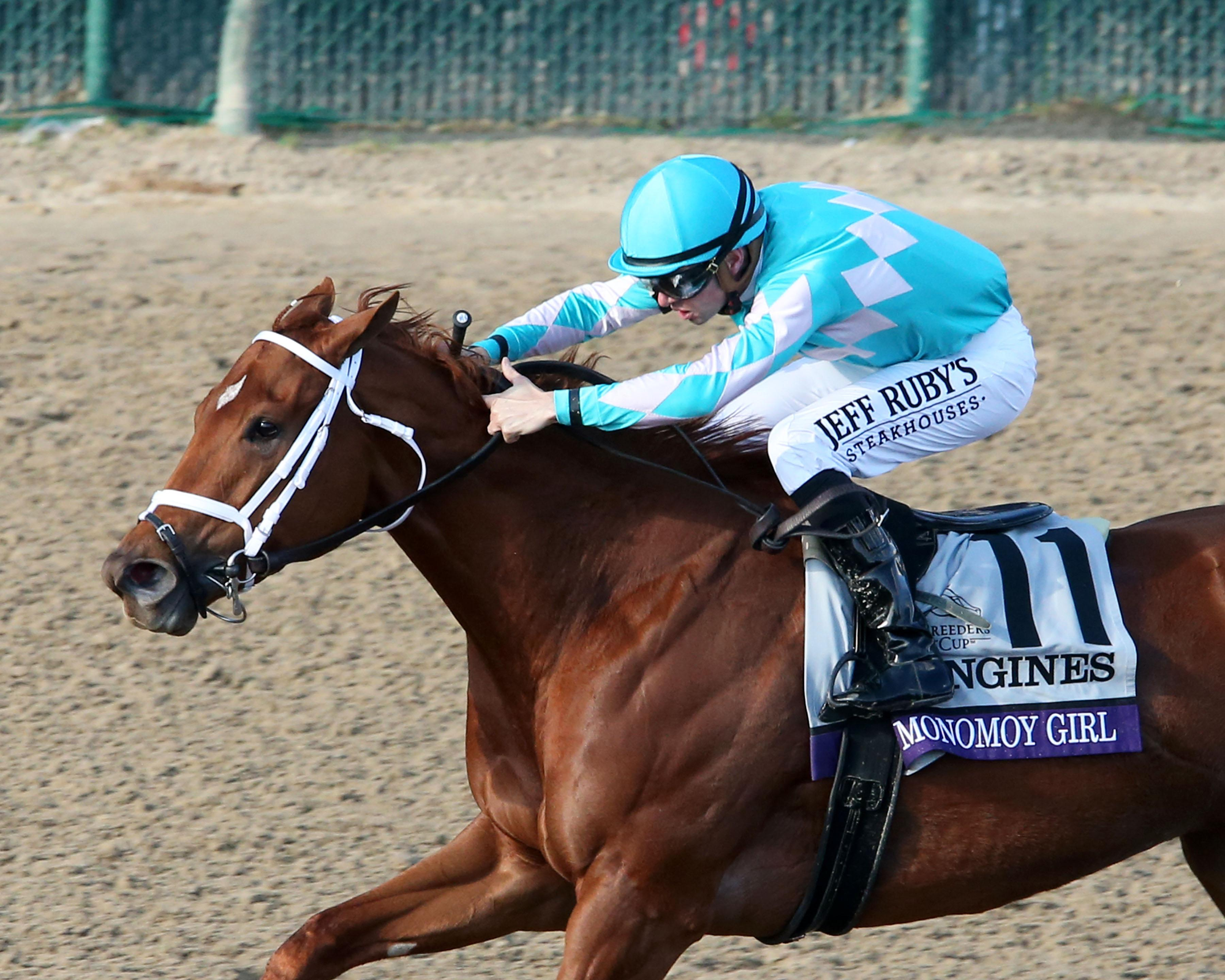 a look back at the top 10 horse racing stories of 2018 america s