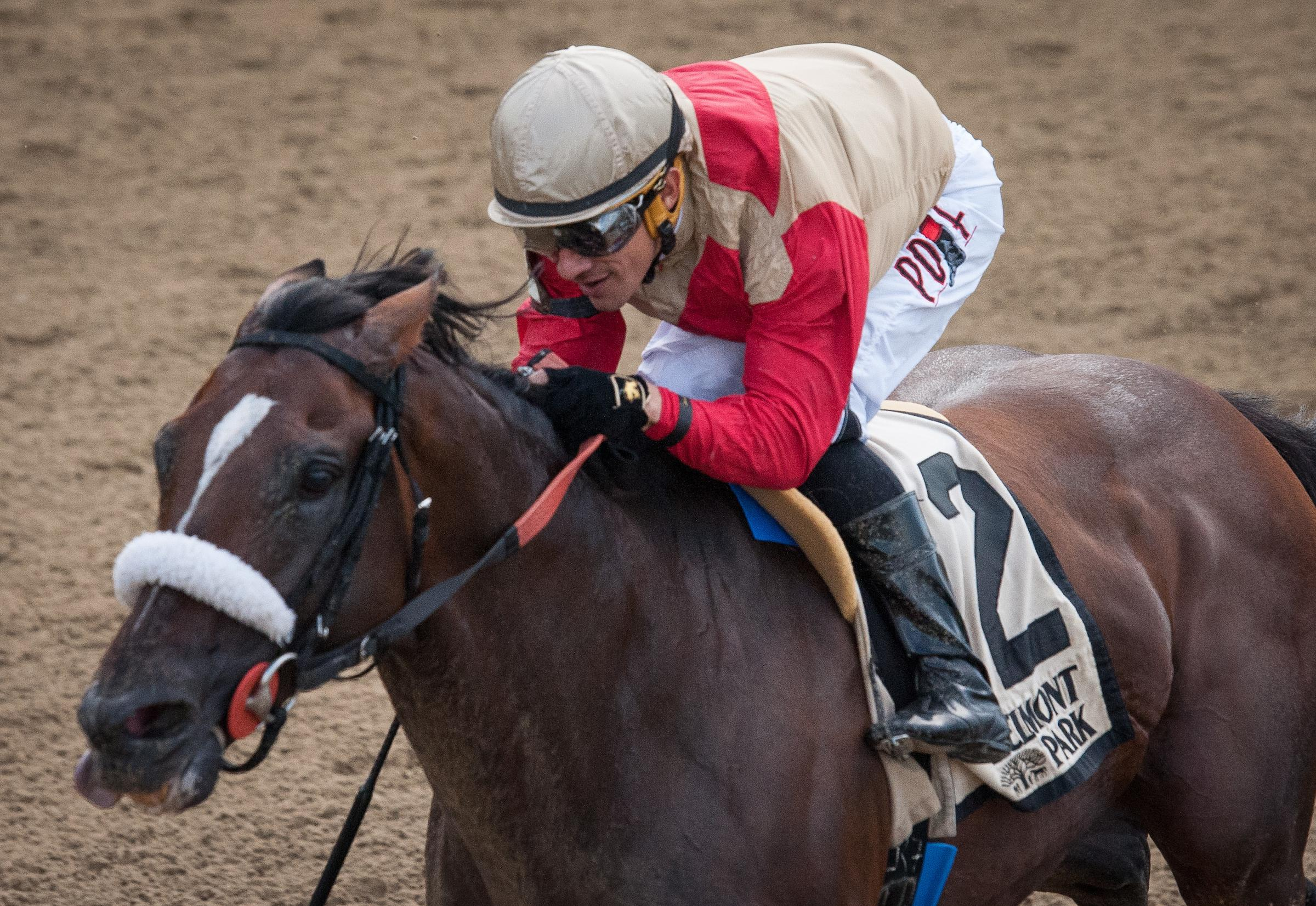 2019 Whitney Stakes Cheat Sheet America S Best Racing