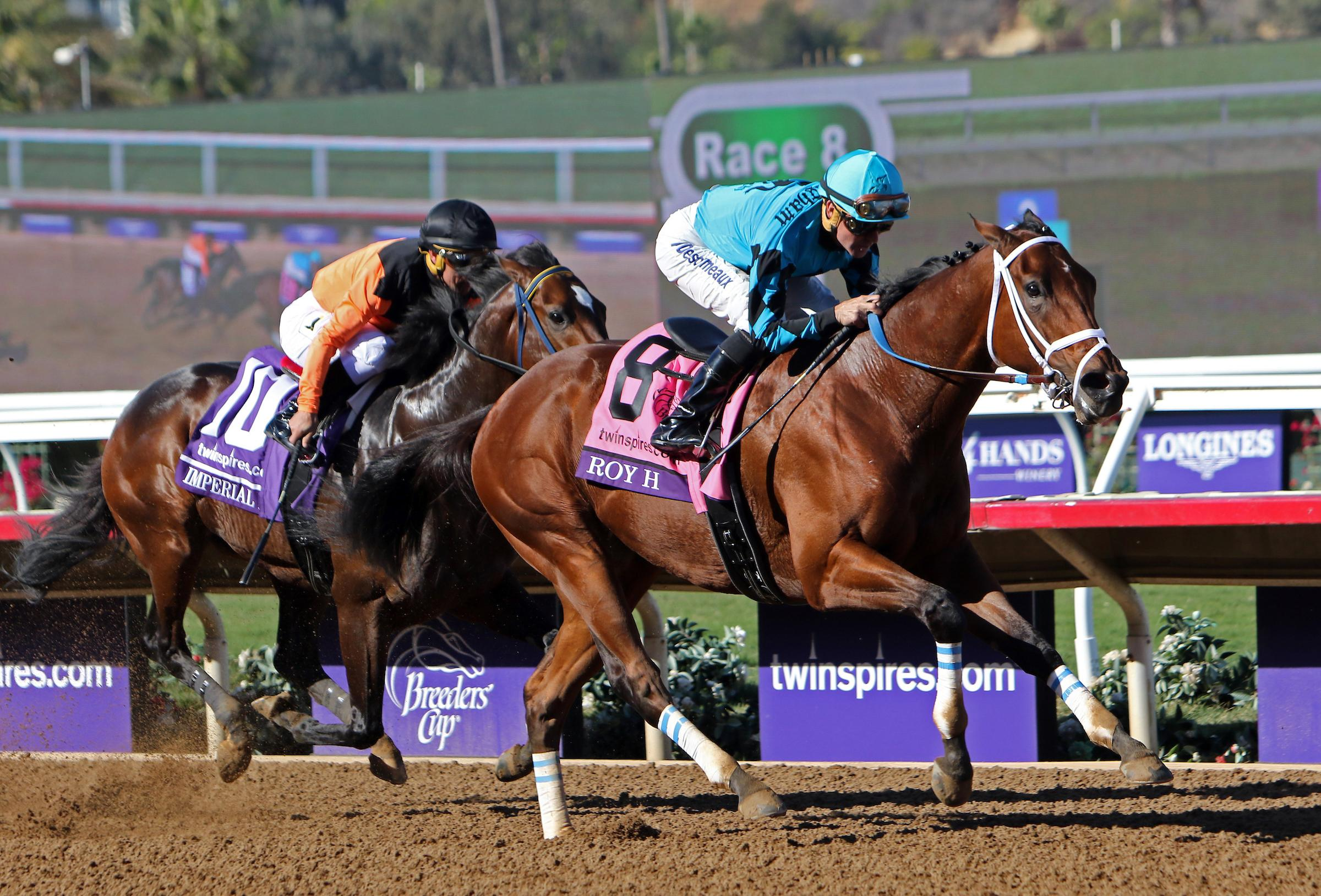 Breeders Cup Under The Microscope Analyzing The Sprint