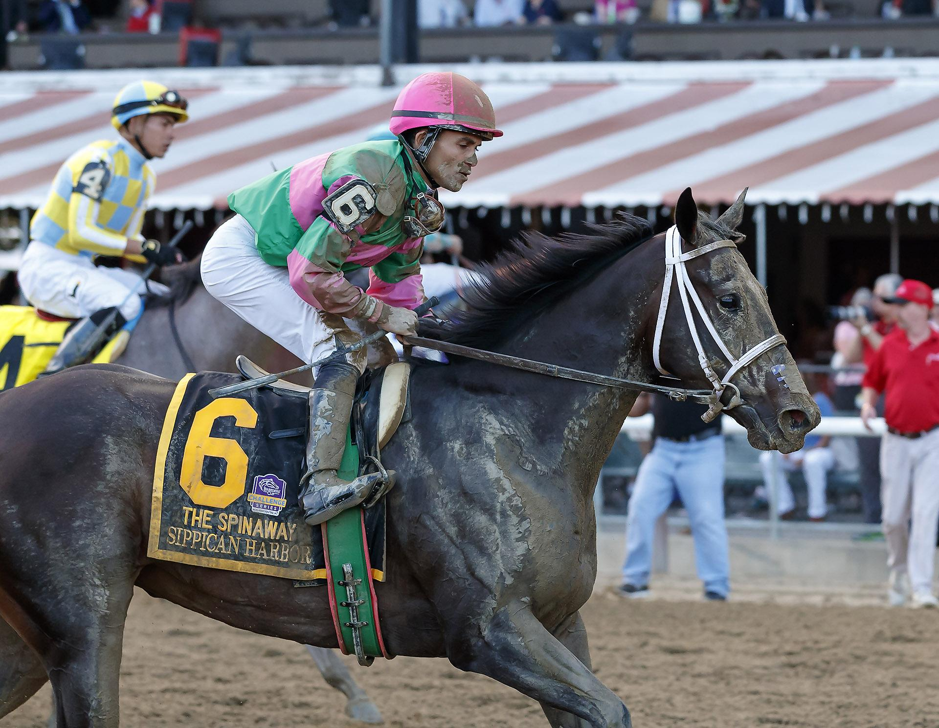 Five Breeders Cup Horses To Consider At Attractive Odds
