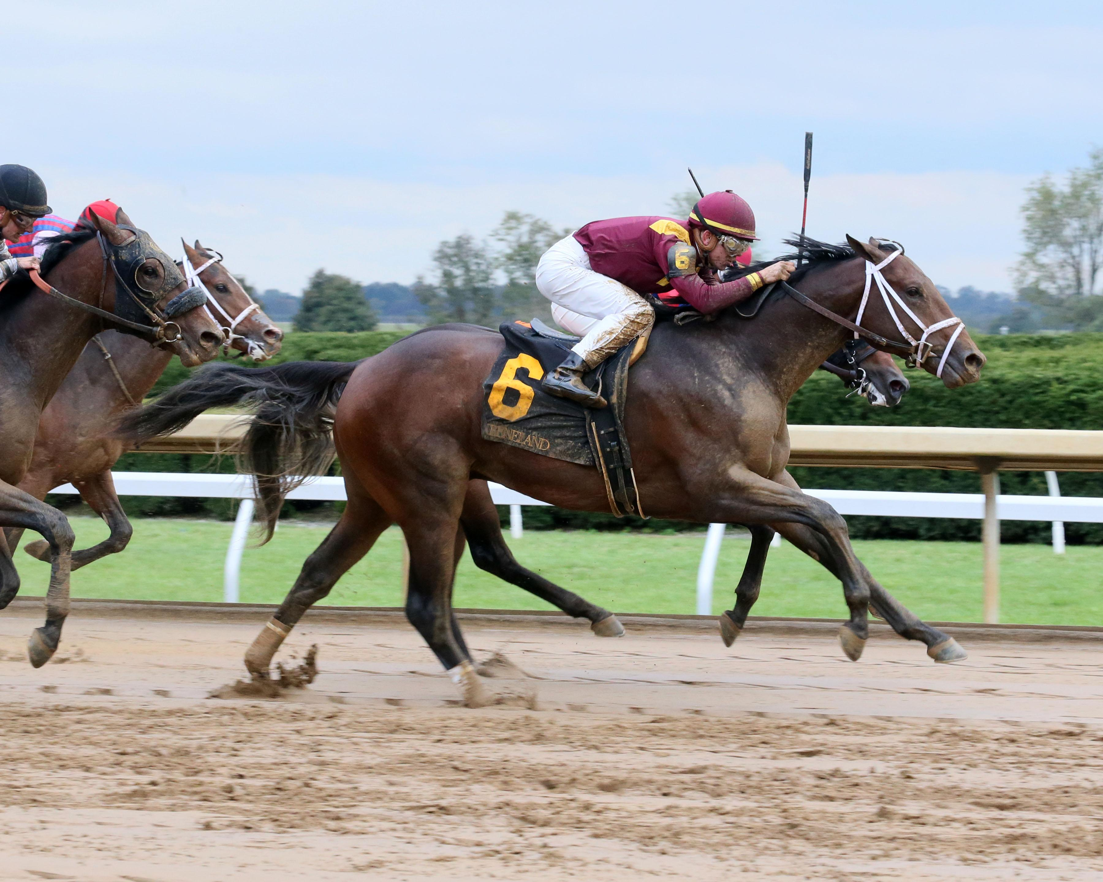 2019 Toyota Blue Grass Stakes Cheat Sheet America S Best