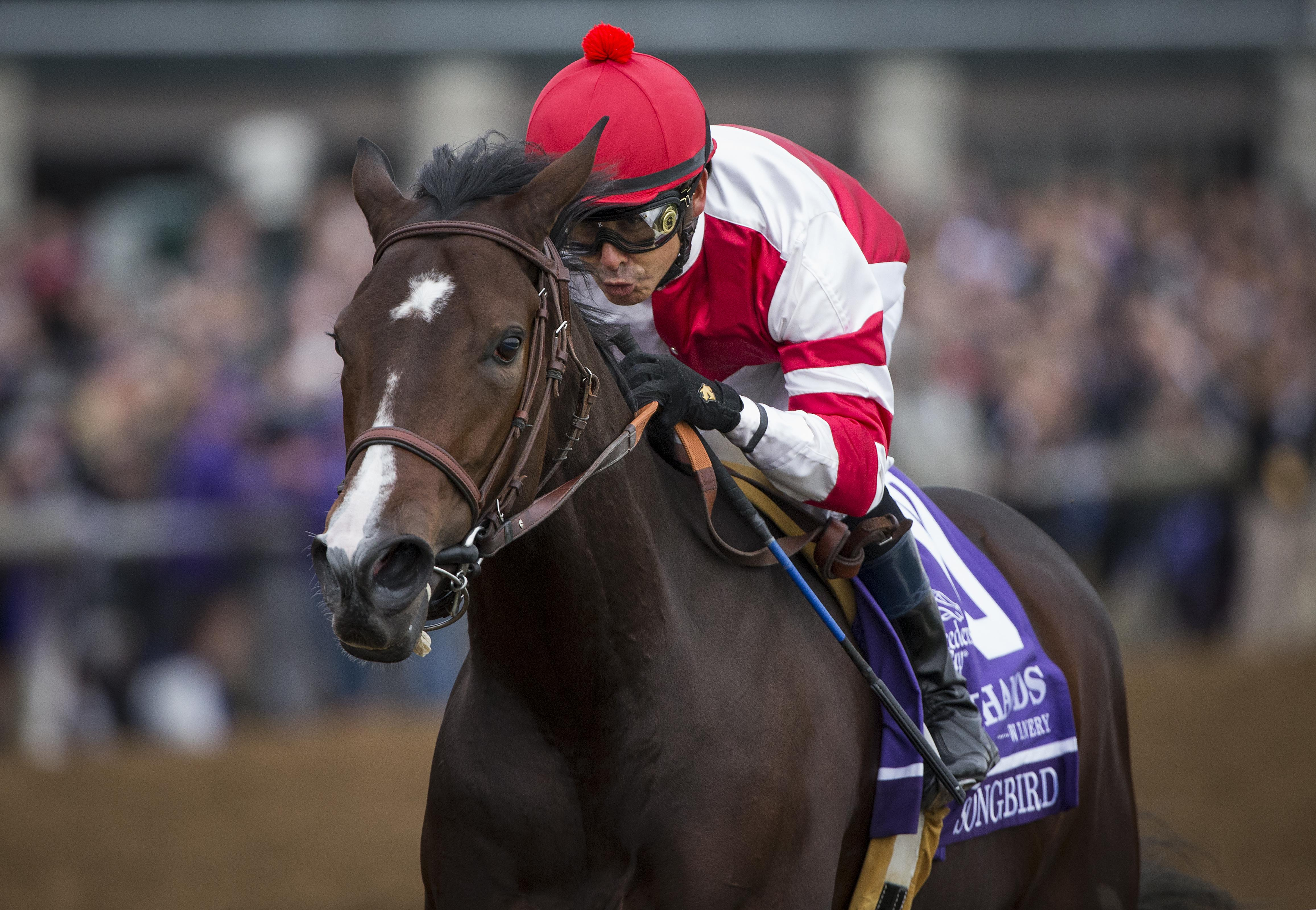 Things To Know About The Eclipse Awards America S Best