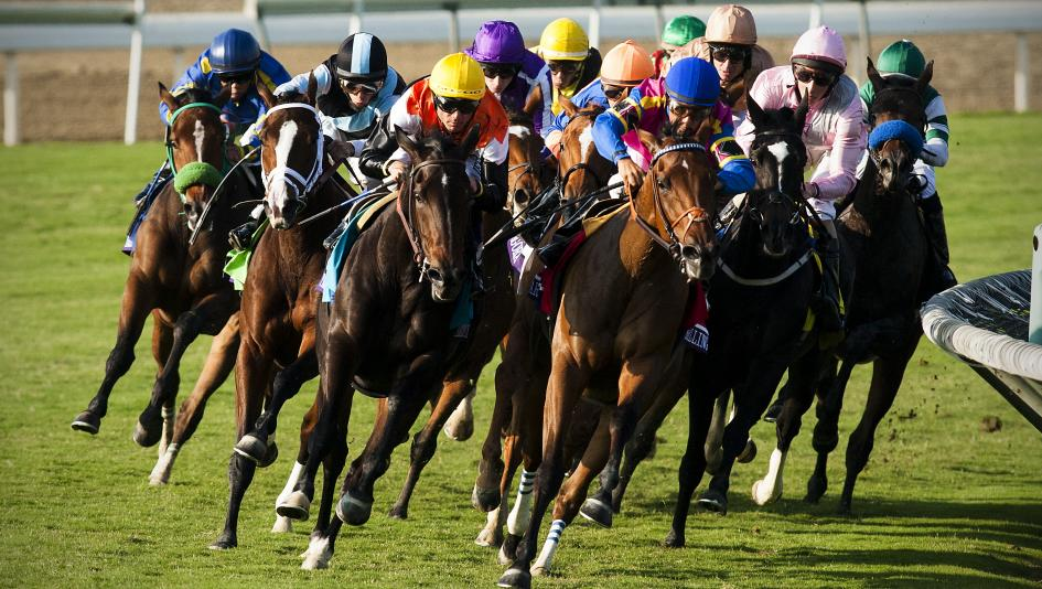 You Can Still Watch and Bet on Horse Racing | America's Best Racing