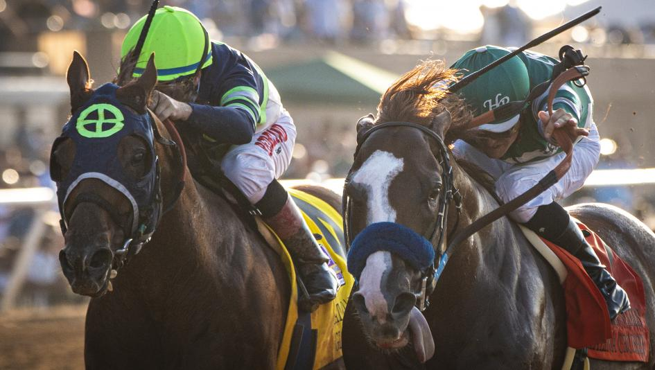 Getting To Know 2019 Breeders Cup Dirt Mile Contender