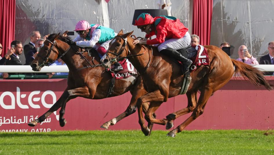 Enable Among Trio of Longines World's Best Racehorse Winners