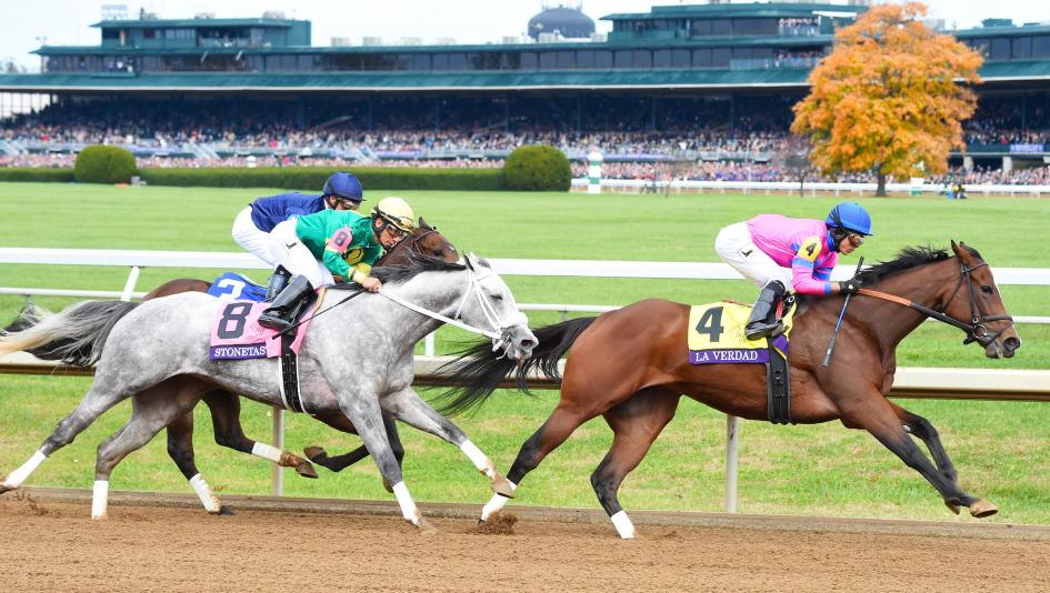 Best bets on the preakness day trading spread betting strategies
