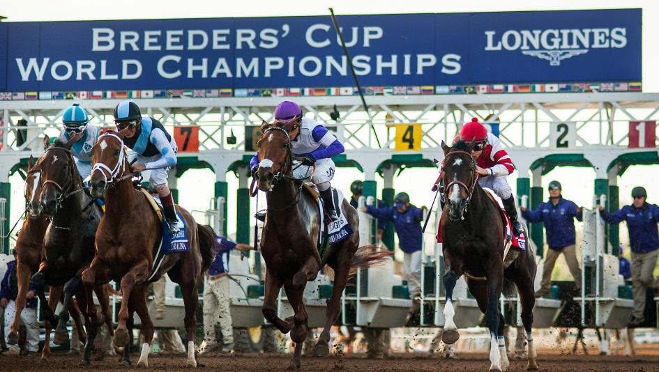 Stableduel Announces Back2back At The Breeders Cup