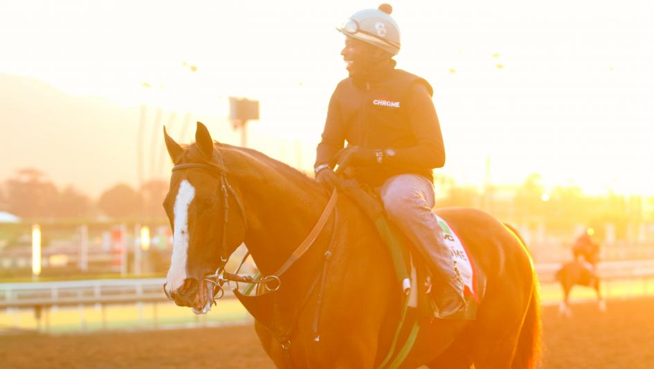 Santa Anita Diaries: A Morning with California Chrome