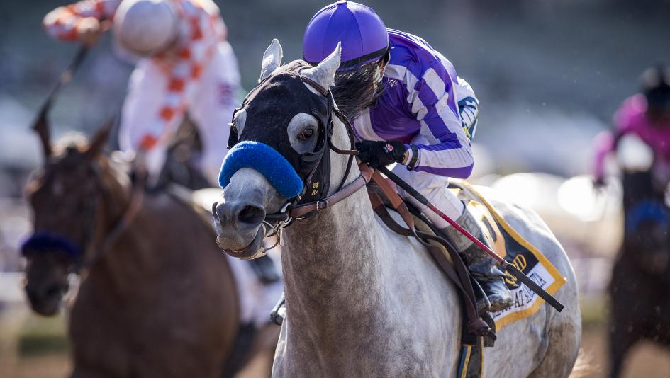 Cupid Pierces Grade 1 Target with Gold Cup Victory