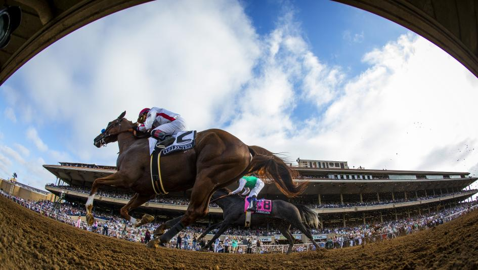 Five Questions To Be Answered In 2019 Tvg Pacific Classic