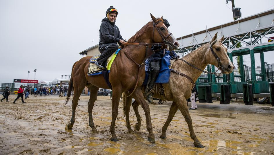 Horses Begin To Arrive For Preakness