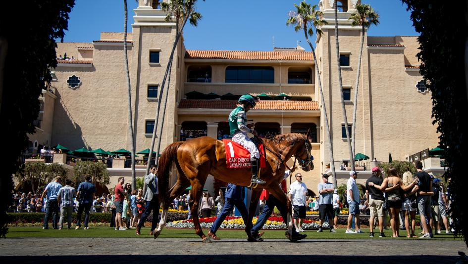 Stay Lucky Picks Dandy Weekend Highlighted By Del Mar