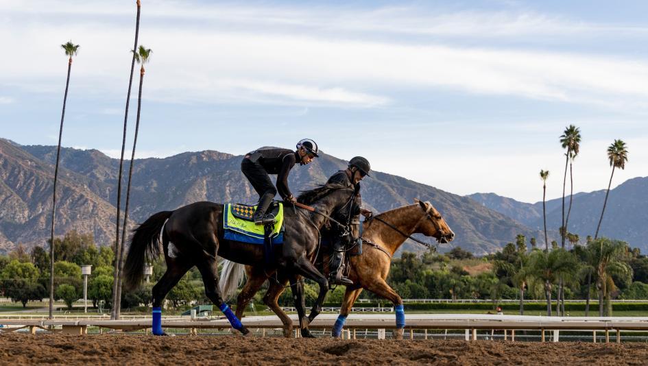 Stay Lucky Picks: Opening Weekend at Santa Anita Fall Meet