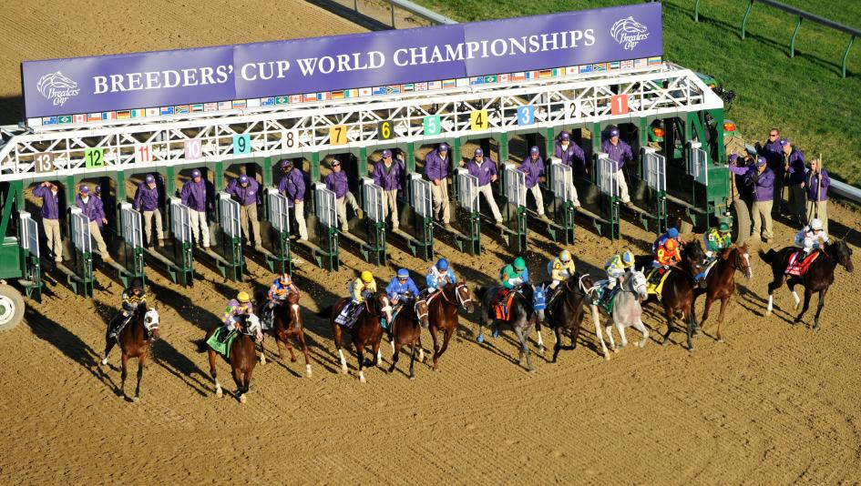 Registration For 2018 Breeders Cup Betting Challenge Now