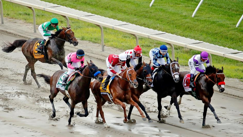 Haskell Invitational Stakes Cheat Sheet
