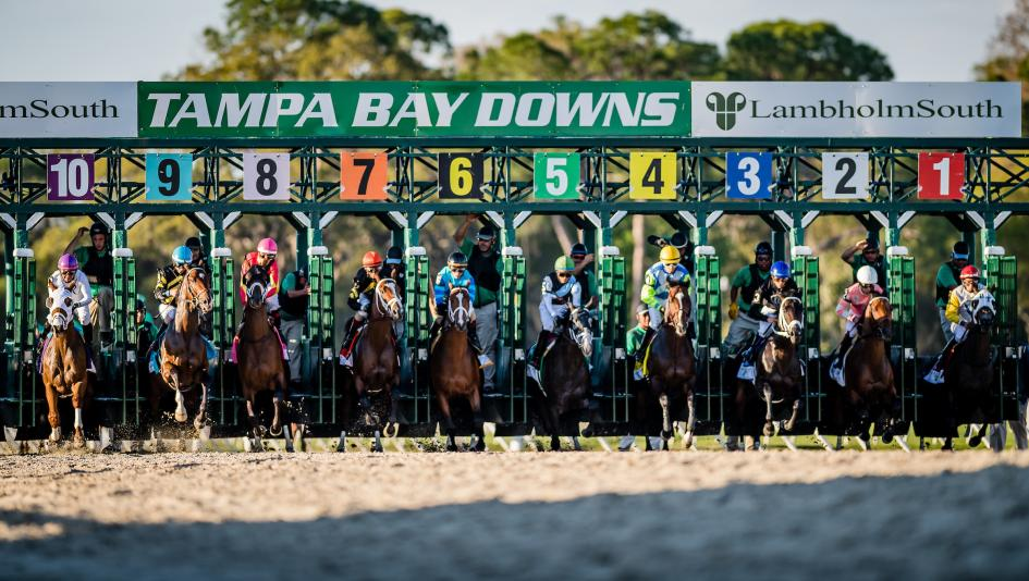 Five Questions To Be Answered In The Tampa Bay Derby
