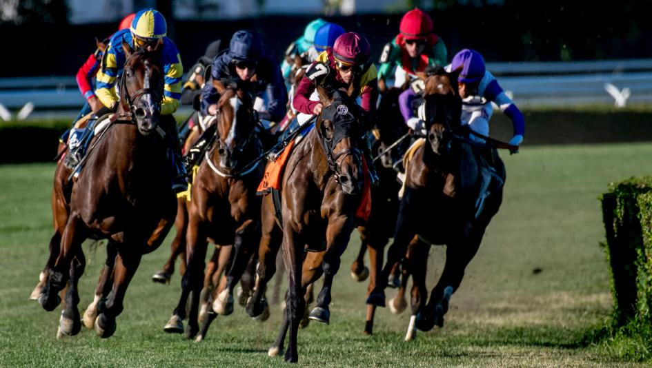 Top Selections in a World-Class Edition of the Belmont Derby