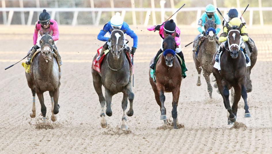 Byron King's Derby Dozen for April 14