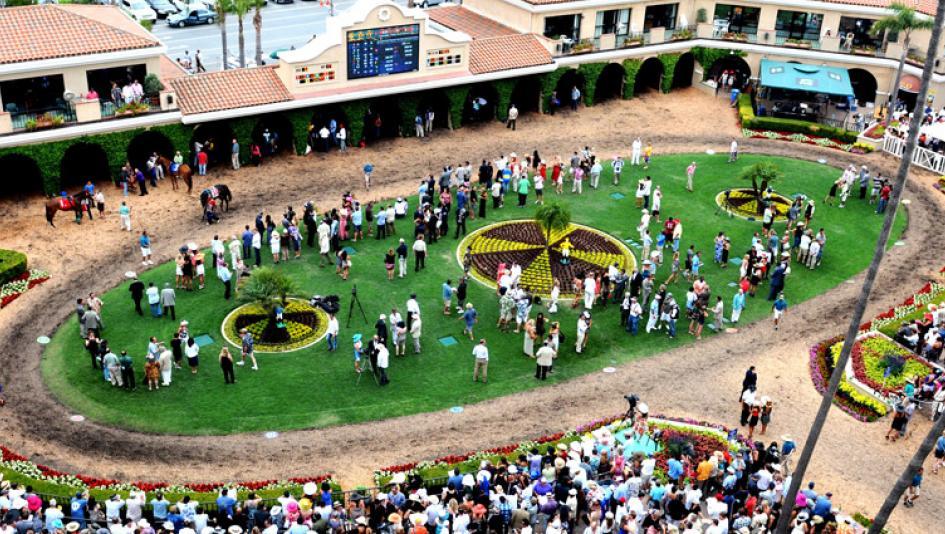 Twenty-Two Horse Racing Questions You Were Embarrassed to Ask (También en Español)